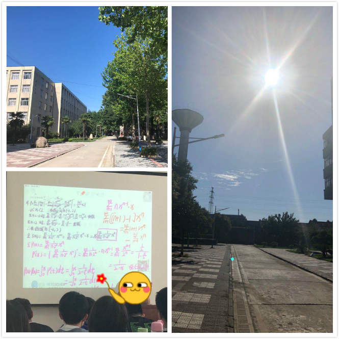 sunshine_9.jpg